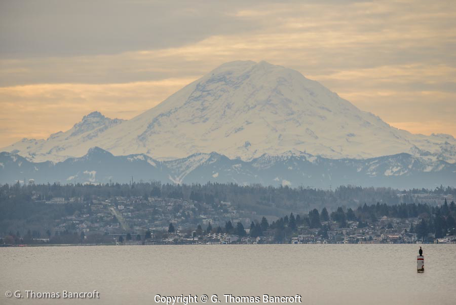 Mt Rainier rises looms abover Lake Washington.