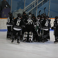 Men's Ice Hockey: University of Wisconsin-Stevens Point Pointers vs. Nichols College Bison