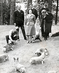 Nov. 1, 1979 - Balmoral, Scotland, U.K. - The elder daughter of King George VI and Queen Elizabeth, ELIZABETH WINDSOR (named Elizabeth II) became Queen at the age of 25, and has reigned through more than five decades of enormous social change and development. PICTURED: QUEEN ELIZABETH, PRINCE PHILIP, PRINCE CHARLES, PRINCE ANDREW, PRINCESS ANNE with her son PETER and PRINCE EDWARD and corgies.  (Credit Image: © Keystone Press Agency/Keystone USA via ZUMAPRESS.com)