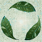 Digitally enhanced image of the recycle logo created with a photograph of three green leaves on white background