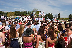 University of Virginia students party in the sun at the Foxfield Races.  The 2009 Foxfield Races were held at the Foxfield Race Course in Charlottesville, VA on April 25, 2009. (Special to the Daily Progress / Jason O. Watson)