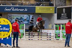 010, Rocco Van't Elzenhout<br /> BWP Hengstenkeuring 3de phase<br /> Oudsbergen 2020<br /> © Hippo Foto - Dirk Caremans<br /> 12/03/2020