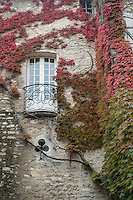 Leafy red and green vines cover part of the wall of a building in the feudal quarter of Vaison la Romaine, in Provence, France. An architectural feature resembling the suit of clubs in playing cards sits below a rounded balcony part way up the wall.