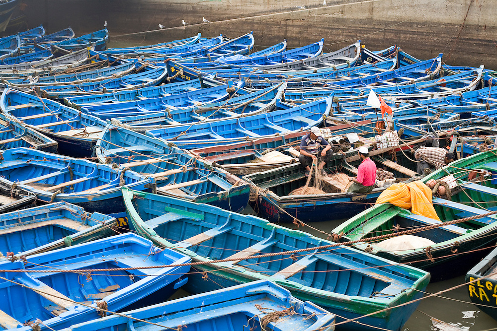 Blue fishing boats packed into Essaouira harbor with a few fishermen working.