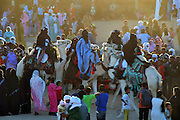 "Tuareg men presenting their camels during the ""III Rencontre Internationale d'Imzad"", Tamanrasset, November 2011"