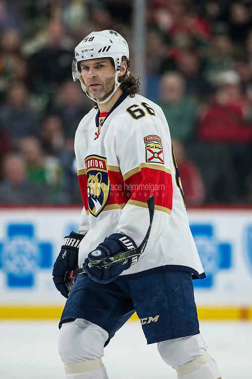 Dec 13, 2016; Saint Paul, MN, USA; Florida Panthers forward Jaromir Jagr (68) against the Minnesota Wild at Xcel Energy Center. The Wild defeated the Panthers 5-1. Mandatory Credit: Brace Hemmelgarn-USA TODAY Sports