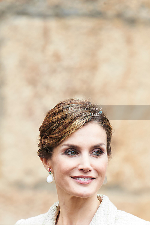Queen Letizia of Spain attend the 'Principe de Viana' 2015 award and Tribute to the Navarra Old Royals at San Salvador de Leyre Monastery on June 10, 2015 in Navarra, Spain.