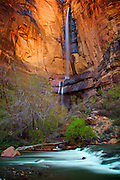 In Zion National Park, the Falls at Sinawava can be viewed from the Riverside Trail. Ethereal lighting, moving water, and beautiful suroundings make this a magical place.