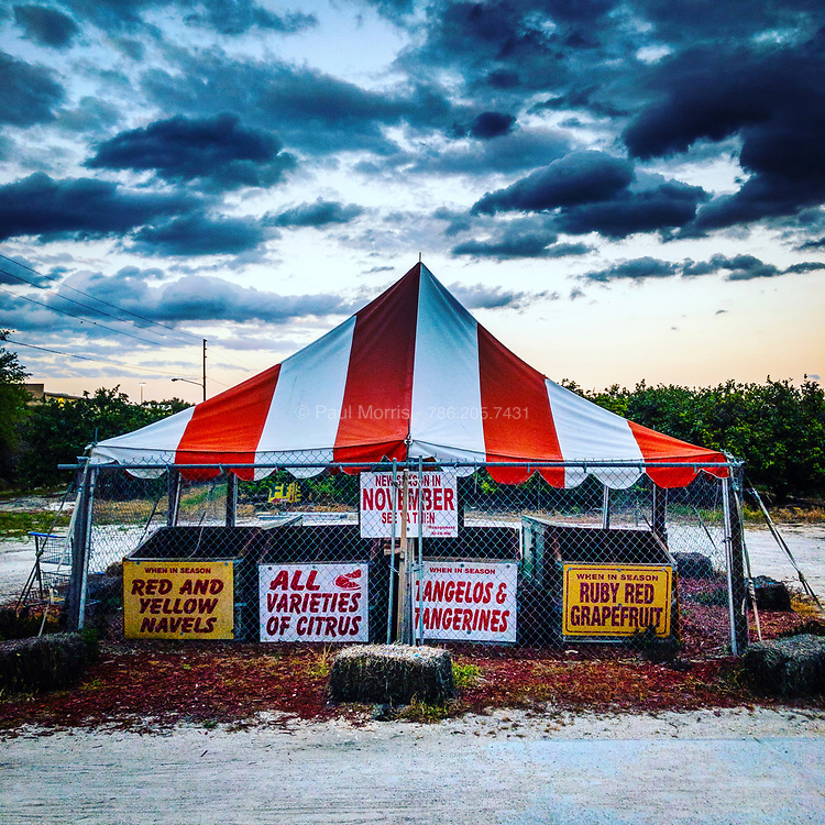 Seasonal fruit stand next to orange groves in rural Central Florida.