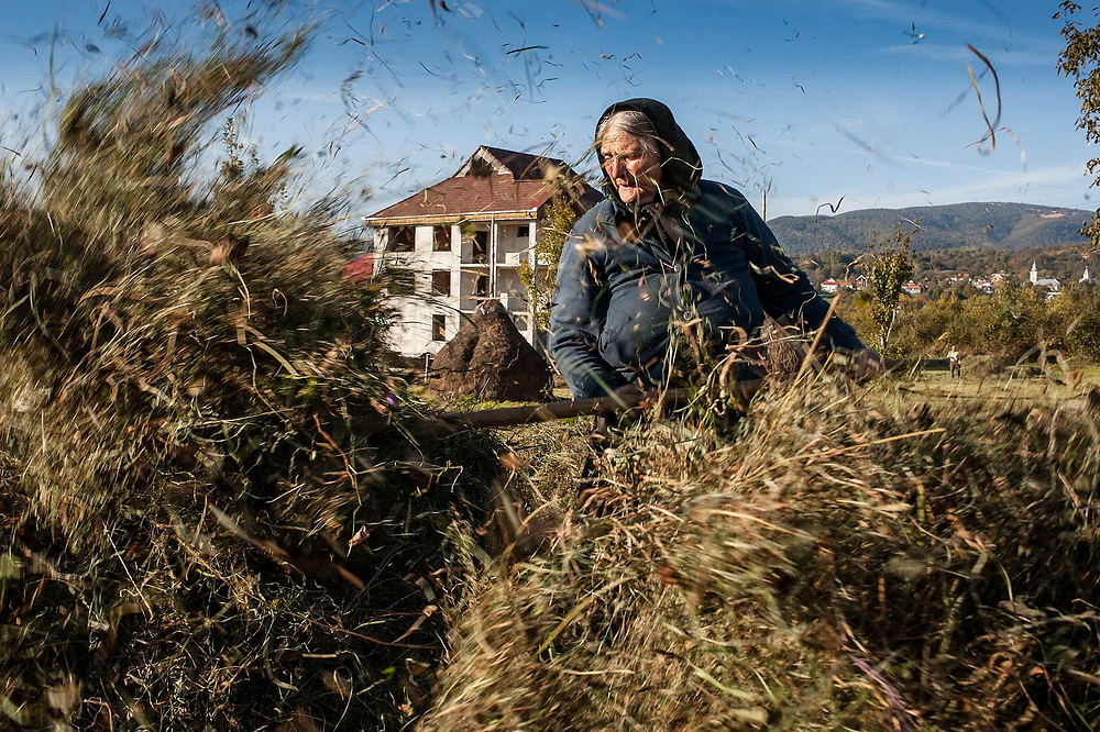 An elderly woman prepares hay for feeding her animals on a field near her house. Most of the young people in these villages have left work abroad, leaving only the elderly behind.