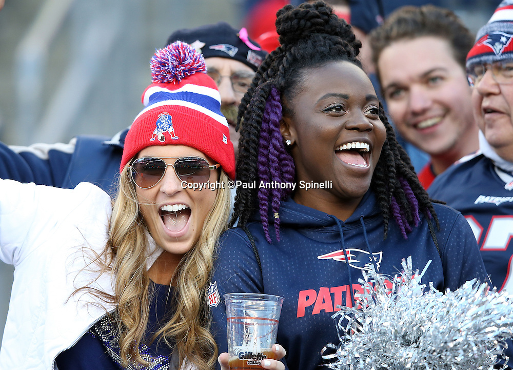 A pair of New England Patriots fans cheer for the team during the 2015 week 9 regular season NFL football game against the Washington Redskins on Sunday, Nov. 8, 2015 in Foxborough, Mass. The Patriots won the game 27-10. (©Paul Anthony Spinelli)