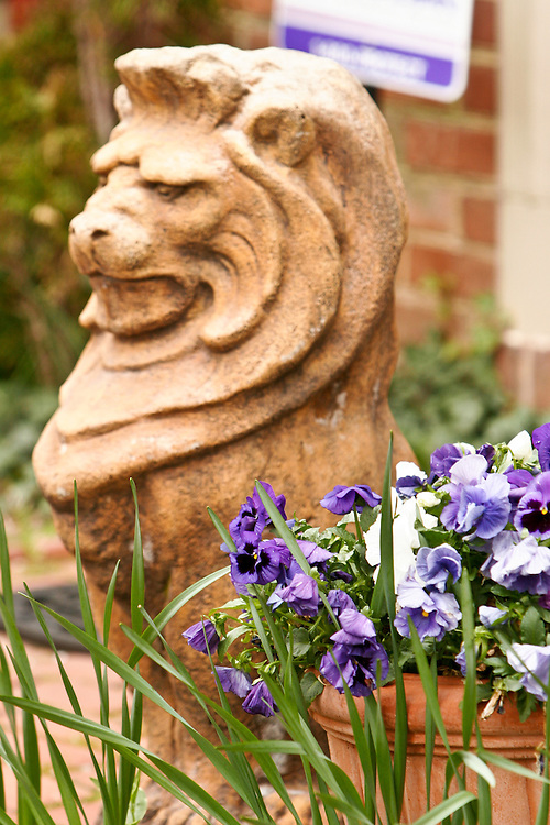A lion guards the front garden of a Capitol Hill home.