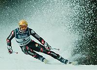 Michael VON GRUENIGEN,            Ski alpin Schweiz  Riesenslalom<br />Gold Weltmeister  GrŸnigen