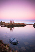 Wintery tide pools in Narragansett, Rhode Island, with a rising full moon on the horizon.  Winter had arrived and many of the tidepools were dry with seaweed covered fragments of ice that had broken as the day melted and refrozen as the chill set back in.  But this deeper pool still contained water.  It was quiet and gently reflecting the Belt of Venus in the sky, that band of blue-pink-blue that appears after sunset.  The moon began to rise and make it's appearance.  Luckily, with no wind to speak of, the tidepool remained still like glass and the quiet winter made its presence known.  I put on another coat and waited for the right moment when the moon would reflect just right.