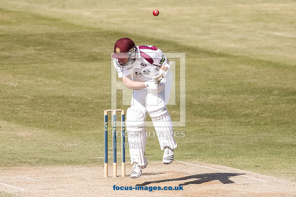 James Middlebrook of Northamptonshire County Cricket Club takes evasive action during day 4 of the LV County Championship Div One match at the County Ground, Northampton<br /> Picture by Andy Kearns/Focus Images Ltd 0781 864 4264<br /> 16/04/2014