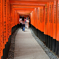 Walking Inside Senbon Torii at Fushimi Inari Taisha in Kyoto, Japan<br />