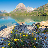 glacier national park going to the sun mountain