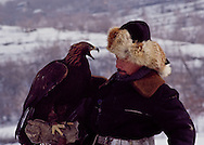 Abdulkhak Turlybayev is known as 'The Eagle Man' because of his mastery of these magnificent creatures.  Kazakhs call men like Mr. Turlybayev 'Qusbegi,' or 'Lord of the Birds.'  Watching him work with his eagle quickly made me understand that what he has and feels transcends 'skill' - it rises to 'relationship.'  Kazakhs revere the golden eagle in part because they fly so high and close to the sun.  Pilots have reported seein them as high as 20,000 feet.