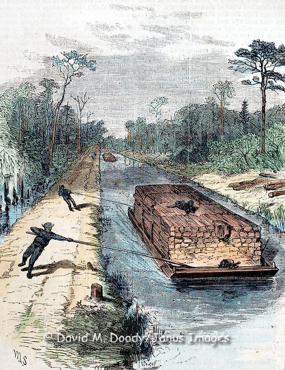 Great Dismal Swamp, Virginia Harper's Weekly 1873  page 505.19th century newspaper illustration