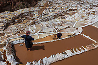women working at Maras salt mines in the peruvian Andes at Cuzco Peru