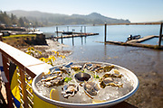 Fresh Netarts oysters on the half shell, served on the Outdoor deck, overlooking Nehalem Bay at the Salmonberry Saloon in Wheeler, Oregon