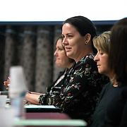 2017-11-15 Women in Science Panel (Hammersley)