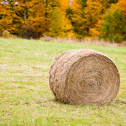 Hay bales at Mountain View Farm in fall in Vermont's Northeast Kingdom.  East Burke.