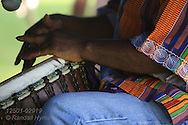 Drummer beats out rhythm on djembe drum for traditional slow Colombian cumbia dance at Festival of Nations celebratoin in Tower Grove Park; St. Louis, Missouri.