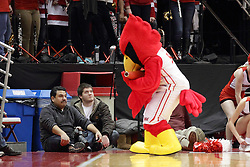 21 November 2015: Reggie looks for a friend in Carlos Miranda.  Carlos looks disinterested.  Illinois State Redbirds host the Houston Baptist Huskies at Redbird Arena in Normal Illinois (Photo by Alan Look)