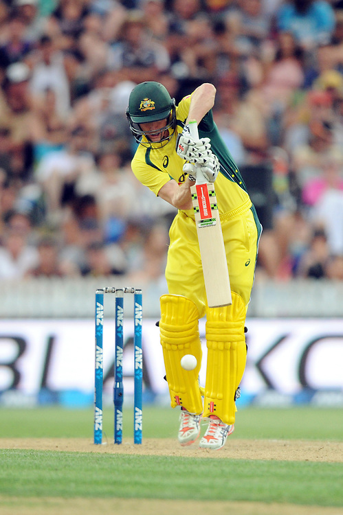 Australia's George Bailey batting against New Zealand in the 3nd One Day International Cricket match at Seddon Park, Hamilton, New Zealand, Monday, Feb 8, 2016. (Ross Setford/SNPA via AP) NEW ZEALAND OUT
