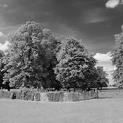 Fence & Trees - Avebury, UK - Infrared Black & White
