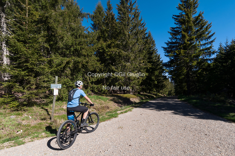 France, Occitanie, Lozère (48), vélo éléctrique forêt autour du lac de Carpal // France, Occitanie, Lozere departement, electric bike in forest area of Charpal Lake