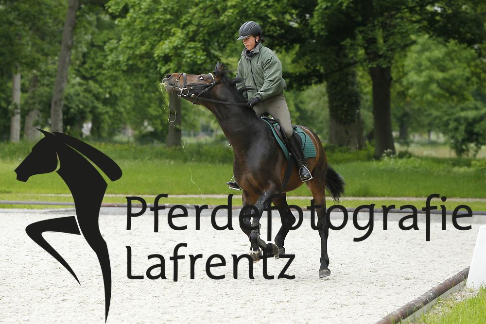 Anreiten<br /> Redefin - erstes Anreiten von jungen Pferden 2010<br /> www.sportfotos-lafrentz.de/Stefan Lafrentz