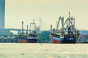 "17 NOVEMBER 2012 - BANGKOK, THAILAND:  Ocean freighters tied up in Klong Toey Port in Bangkok. Klong Toey has served as Bangkok's deep water port for centuries, but as ships have gotten bigger and Thailand's role in the world economy has expanded most of the commercial shipping has moved to ports closer to the ocean. Bangkok used to be known as the ""Venice of the East"" because of the number of waterways the criss crossed the city. Now most of the waterways have been filled in but boats and ships still play an important role in daily life in Bangkok. Thousands of people commute to work daily on the Chao Phraya Express Boats and fast boats that ply Khlong Saen Saeb or use boats to get around on the canals on the Thonburi side of the river. Boats are used to haul commodities through the city to deep water ports for export.    PHOTO BY JACK KURTZ"