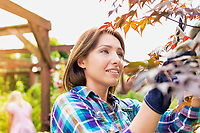 Portrait of mature beautiful gardener examining plants