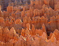 View of Bryce Canyon hoodoos from canyon rim, Bryce Canyon National Park Utah USA