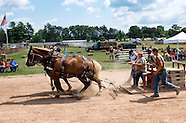 2014-8-16-Waushara County Fair