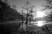 everglades gallery big cypress gallery johnbobcarlos johnbob florida gallery landscapes swampman gladesman