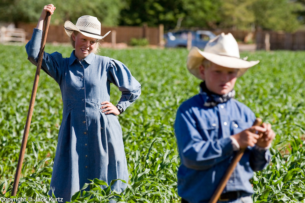 "June 16, 2008 -- COLORADO CITY, AZ: Members of the Jessop family, a polygamous family and members of the FLDS in Colorado City, AZ, weed the community corn field. The family grows about 30 percent of the food they consume and buy the rest at the town mercantile store. Colorado City and neighboring town of Hildale, UT, are home to the Fundamentalist Church of Jesus Christ of Latter Day Saints (FLDS) which split from the mainstream Church of Jesus Christ of Latter Day Saints (Mormons) after the Mormons banned plural marriage (polygamy) in 1890 so that Utah could gain statehood into the United States. The FLDS Prophet (leader), Warren Jeffs, has been convicted in Utah of ""rape as an accomplice"" for arranging the marriage of teenage girl to her cousin and is currently on trial for similar, those less serious, charges in Arizona. After Texas child protection authorities raided the Yearning for Zion Ranch, (the FLDS compound in Eldorado, TX) many members of the FLDS community in Colorado City/Hildale fear either Arizona or Utah authorities could raid their homes in the same way. Older members of the community still remember the Short Creek Raid of 1953 when Arizona authorities using National Guard troops, raided the community, arresting the men and placing women and children in ""protective"" custody. After two years in foster care, the women and children returned to their homes. After the raid, the FLDS Church eliminated any connection to the ""Short Creek raid"" by renaming their town Colorado City in Arizona and Hildale in Utah. The Jessops are a polygamous family and members of the FLDS.     Photo by Jack Kurtz"