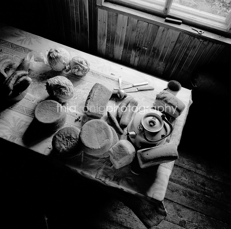Overhead view of ingredients for borscht, Stolby cabin, Russia.