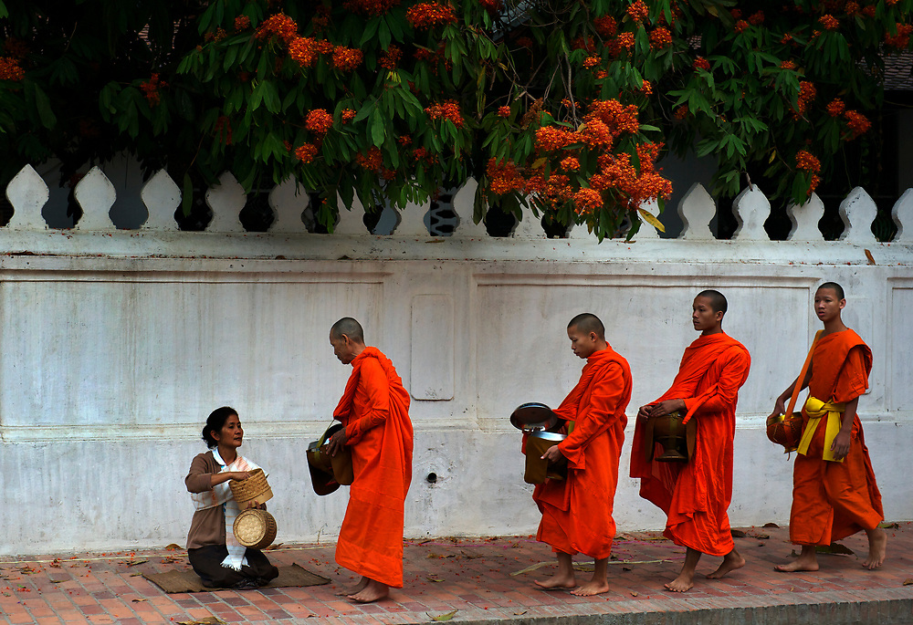 Monka collect alms every morning at dawn, Luang Prabang, Mekong River, Laos