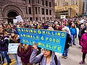 29 APRIL 2017 - MINNEAPOLIS, MINNESOTA: The People's Climate Solidarity March on S 4th Street in Minneapolis. Thousands of people marched through downtown Minneapolis and rallied around the US Federal Courthouse to participate in the People's Climate Solidarity March. The Minneapolis march coincided with other marches to protest the climate change policies of President Trump and the Republican Party that were held across the US. It took place just one week after a series of large marches in support science and fact based decision making.     PHOTO BY JACK KURTZ