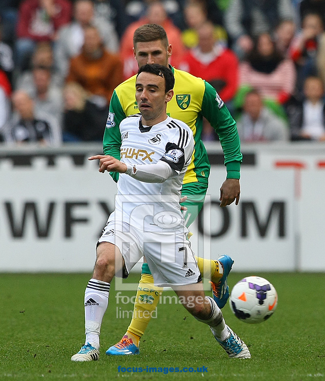 Gary Hooper of Norwich and Leon Britton of Swansea in action during the Barclays Premier League match at the Liberty Stadium, Swansea<br /> Picture by Paul Chesterton/Focus Images Ltd +44 7904 640267<br /> 29/03/2014