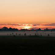 Pink and orange clouds and sky along with morning fog create a beautiful sunrise in Ashburn, VA