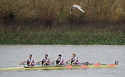 Hammersmith, Greater Game, London, UK. Leander Club IV Elite MLW 4X. Boe Jono CLEGG, Jamie KIRKWOOD, William FLECTHER and Richard CHAMBERS, competing at the 2015 Fours Head of the River Race, River Thames [ opposite Chiswick Eyot]  Saturday  07/11/2015 <br /> <br /> [Mandatory Credit: Peter SPURRIER: Intersport Images]