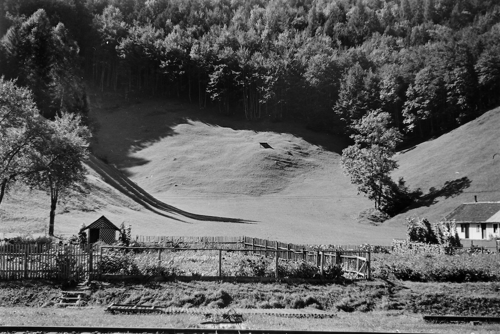 Mountainous landscape, farm on edge of forest, Klaus, Austria, c1930