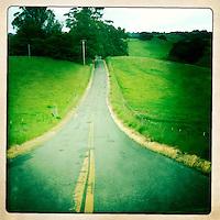 A road through farms and vineyards near Petaluma, California