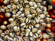 "18 MAY 2017 - BANGKOK, THAILAND: Cockles for sale at a street food stall in Bangkok's Chinatown. City officials in Bangkok have taken steps to rein in street food vendors. The steps were originally reported as a ""ban"" on street food, but after an uproar in local and international news outlets, city officials said street food vendors wouldn't be banned but would be regulated, undergo health inspections and be restricted to certain hours on major streets. On Yaowarat Road, in the heart of Bangkok's touristy Chinatown, the city has closed some traffic lanes to facilitate the vendors. But in other parts of the city, the vendors have been moved off of major streets and sidewalks.      PHOTO BY JACK KURTZ"