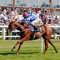 Dovil's Duel and Andrea Atzeni winning the 2.50 race