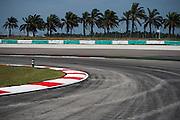 March 27-29, 2015: Malaysian Grand Prix - Track detail, Sepang